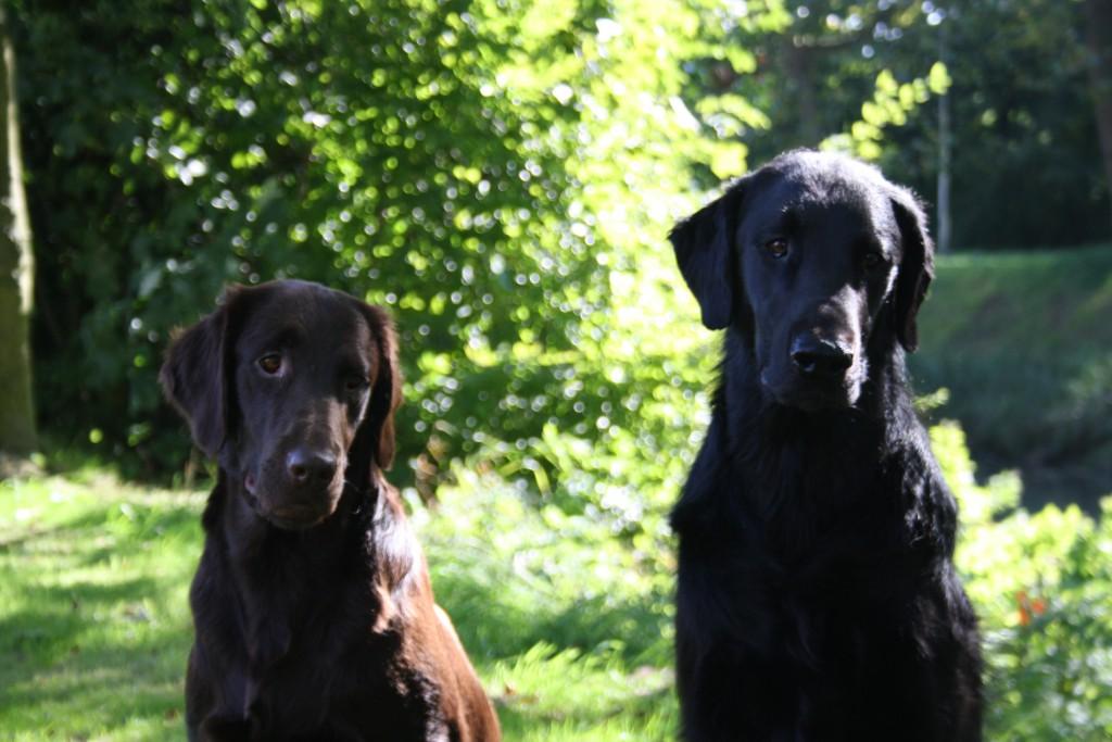 Zoey en Luca